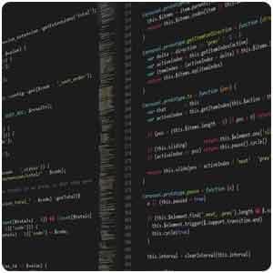 Custom Software Developer 1